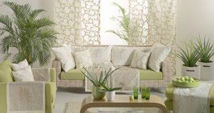 صوره تزيين البيت , تزيين الحوائط بالنباتات للمنزل
