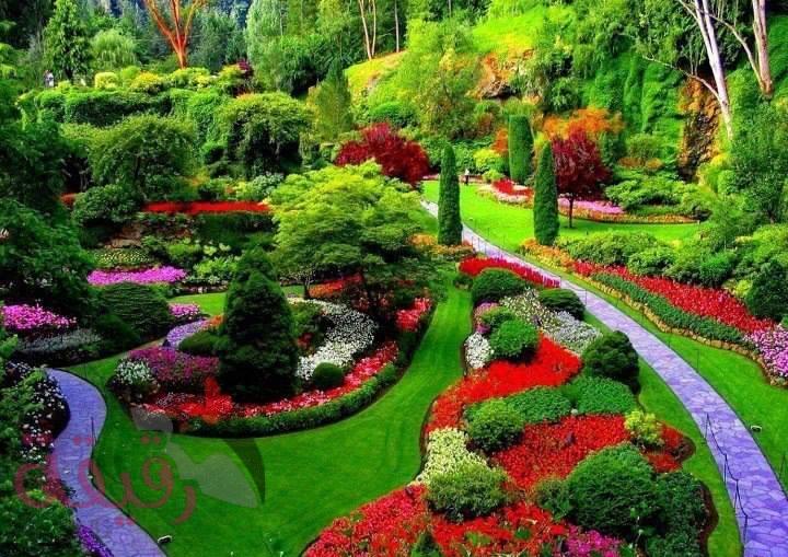 صوره صور من الطبيعة , اروع واقوى الصور عن جمال الطبيعه