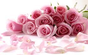 ورود جميلة اجمل الصور لاحلى الزهور مساء الخير