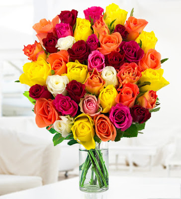 صورة ورود جميلة , اجمل الصور لاحلى الزهور