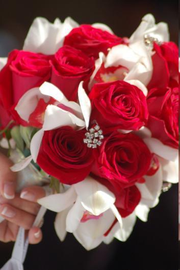 بالصور صور ورود روعه , اشكال تحفه من اجمل الزهور 2498 2