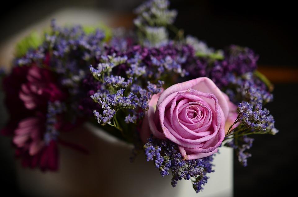 بالصور صور ورود روعه , اشكال تحفه من اجمل الزهور 2498 6