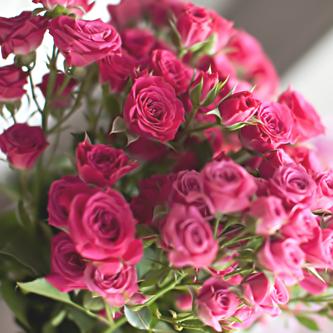 بالصور صور ورد خلفيات , اجمل الخلفيات لاحلى الزهور 2540 2