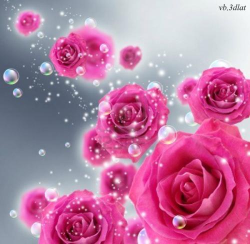 بالصور صور ورد خلفيات , اجمل الخلفيات لاحلى الزهور 2540