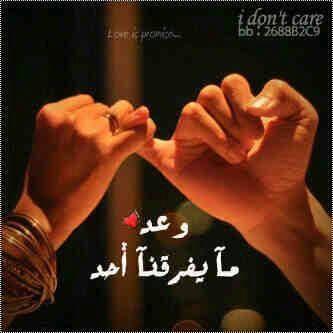 بالصور اشعار حب وشوق , اجمل عبارات الحب 2654 8