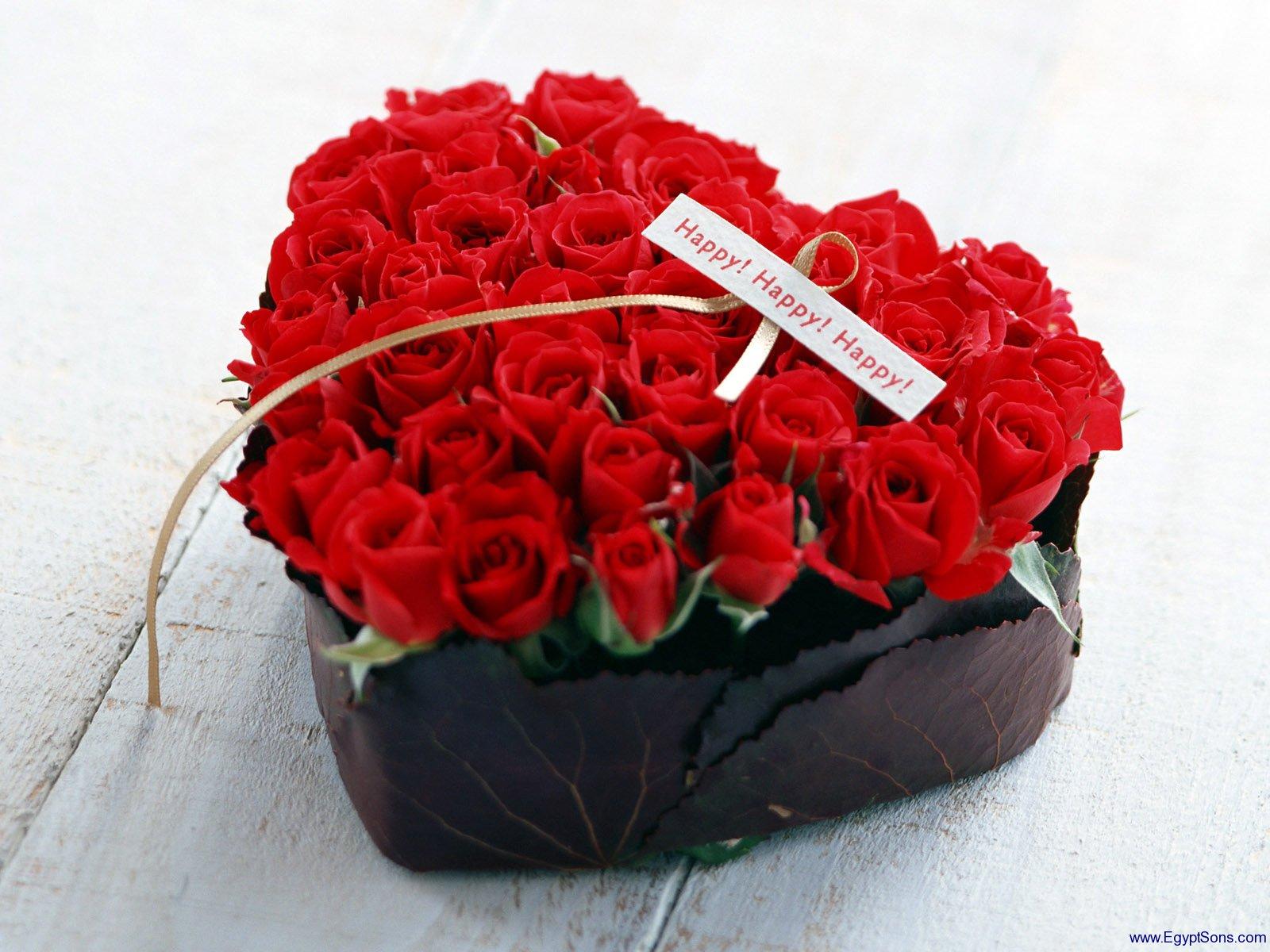 صور اجمل ورود الحب , الورد لغه الحب