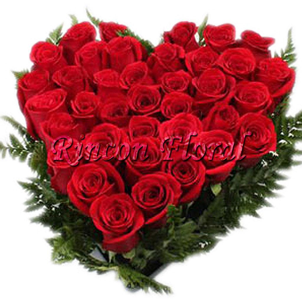 صورة اجمل ورود الحب , الورد لغه الحب