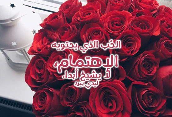 شعر عن الورد كلام لذيذ عن الازهار مساء الخير