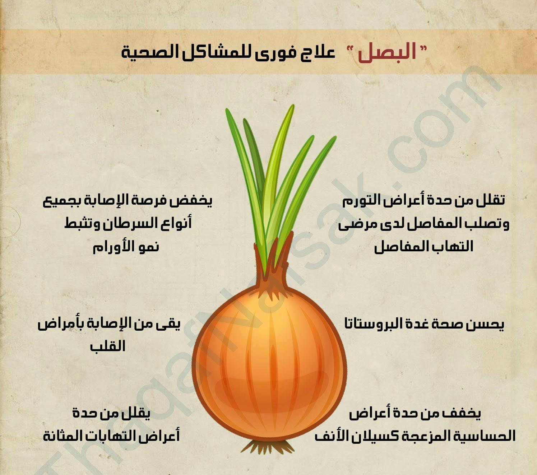 صور فوائد البصل , اتعرف على معلومات هامه
