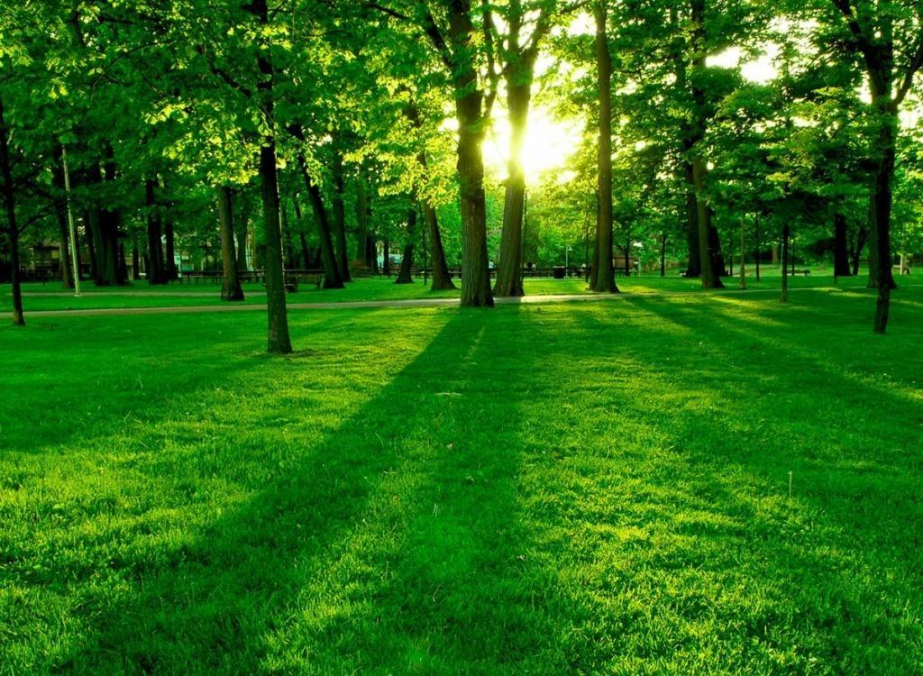 بالصور صور منظر طبيعي , اجمل صور الطبيعة الرائعة 3003