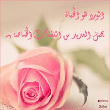 صوره كلمات عن الورد , عبارت راقيه عم الورود