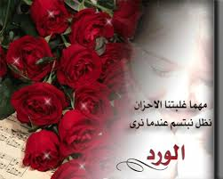 صورة كلمات عن الورد , عبارت راقيه عم الورود unnamed file 151