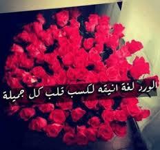 صورة كلمات عن الورد , عبارت راقيه عم الورود unnamed file 152