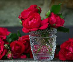 صورة كلمات عن الورد , عبارت راقيه عم الورود unnamed file 155