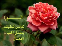صورة كلمات عن الورد , عبارت راقيه عم الورود unnamed file 157