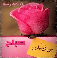 بالصور مسجات صباح الخير رومانسية , صباح الحب بالصور unnamed file 391