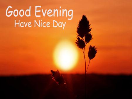 بالصور مساء الخير بالانجليزي , صوره جميله لمساء الخير 1074 4