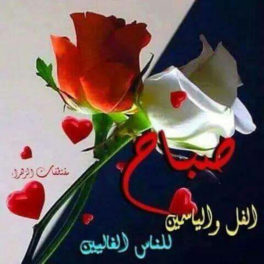 صور صباح الورد للورد , صور جميله جدا بالورد