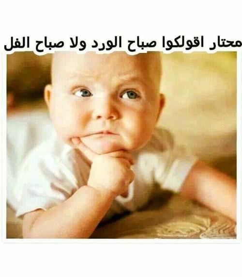 صورة صباح الخير مضحكة , اضحك من قلبك