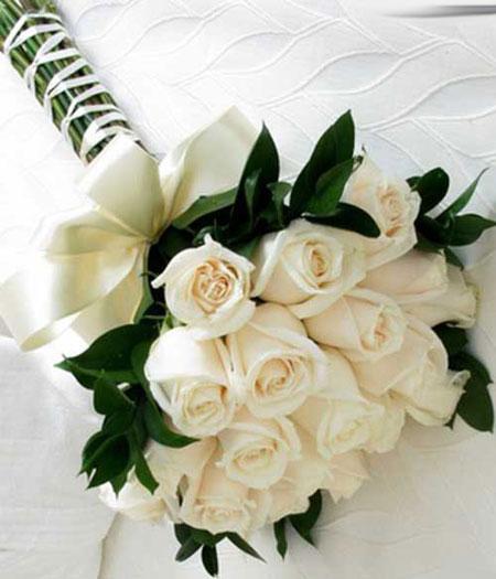 صور صور الورد , اجمل ورده مذهله