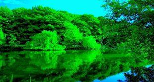 صوره صور الطبيعة الجميلة , اجمل مجموعة من الصور