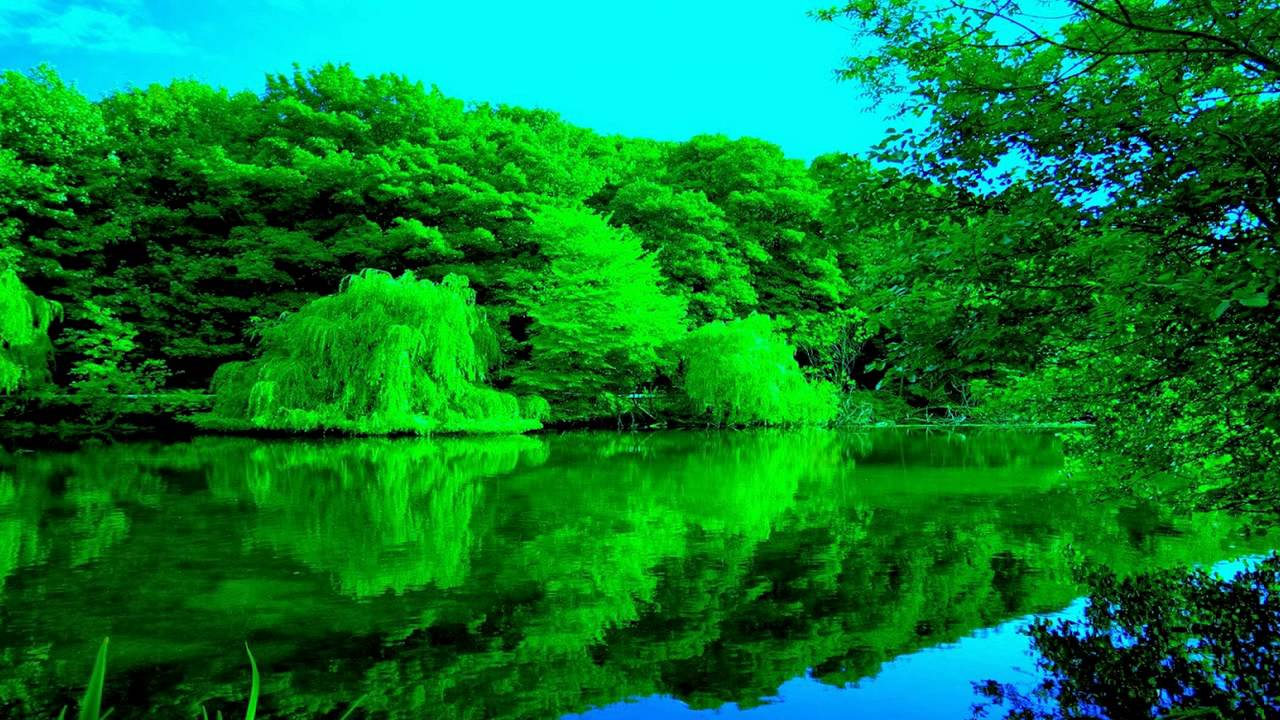 صور صور الطبيعة الجميلة , اجمل مجموعة من الصور
