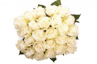 صورة بوكيه ورد ابيض , الورد الابيض هو النقاء