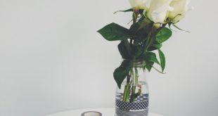 صوره صور ورد حلوه , اجمل زهور 2018 وورد بالصور
