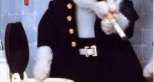بالصور صور قطط مضحكة , احلى صور القطط 2670 11 310x165