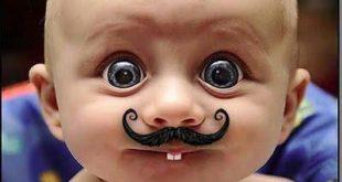 بالصور مقاطع مضحكة , اضحك من قلبك 2713 2 310x165