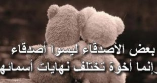 كلمات معبرة عن الصداقة , عبارات رمزية عن الصداقة