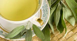 بالصور عشبة الميرمية , نبذة عن هذه النبتة القيمة و فوائدها 3182 1.jpeg 310x165
