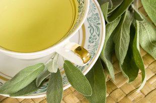 صور عشبة الميرمية , نبذة عن هذه النبتة القيمة و فوائدها