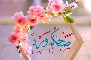 صوره صور صباح الورد , بطاقات رائعة لصباح الورد