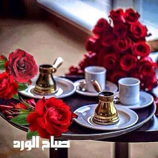 بالصور صور صباح الورد , بطاقات رائعة لصباح الورد 3209 6