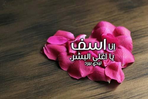 بالصور رسائل اعتذار للحبيب , رسالة حب واشتياق للحبيب 454 2