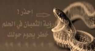صوره تفسير الثعبان في المنام , رؤيه الثعبان فى الحلم