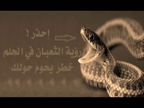صورة تفسير الثعبان في المنام , رؤيه الثعبان فى الحلم