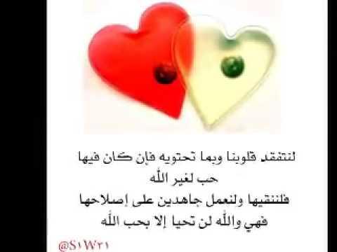 صوره الفرق بين الحب والعشق , المعنى الحقيقى للحب