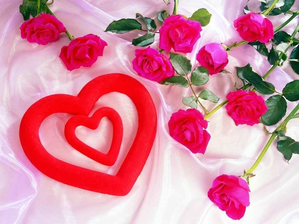 صورة خلفيات ورود , اجمل صور الازهار الرائعه
