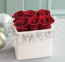 صورة صور الورد , اجمل ورده مذهله