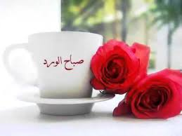 بالصور صباح نور , صور مذهله للصباح الجميل unnamed file 397