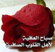 بالصور صباح نور , صور مذهله للصباح الجميل unnamed file 401