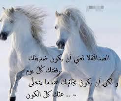 بالصور بيت شعر عن الصديق , الصداقه كنز لايفنى unnamed file 457
