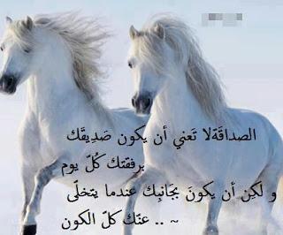 بالصور شعر عن الاخوة والصداقة , ابيات من الشعر مصورة عن الصديق 3713 5