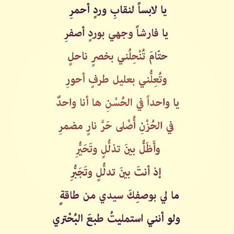 صورة شعر غزل للحبيب , كلمات تزيب القلب حبا 1733 4