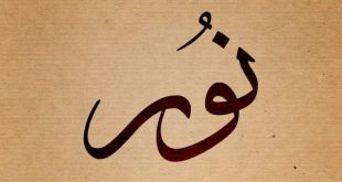 صورة معنى اسم نور , اجمل الاسماء اسمك يانور