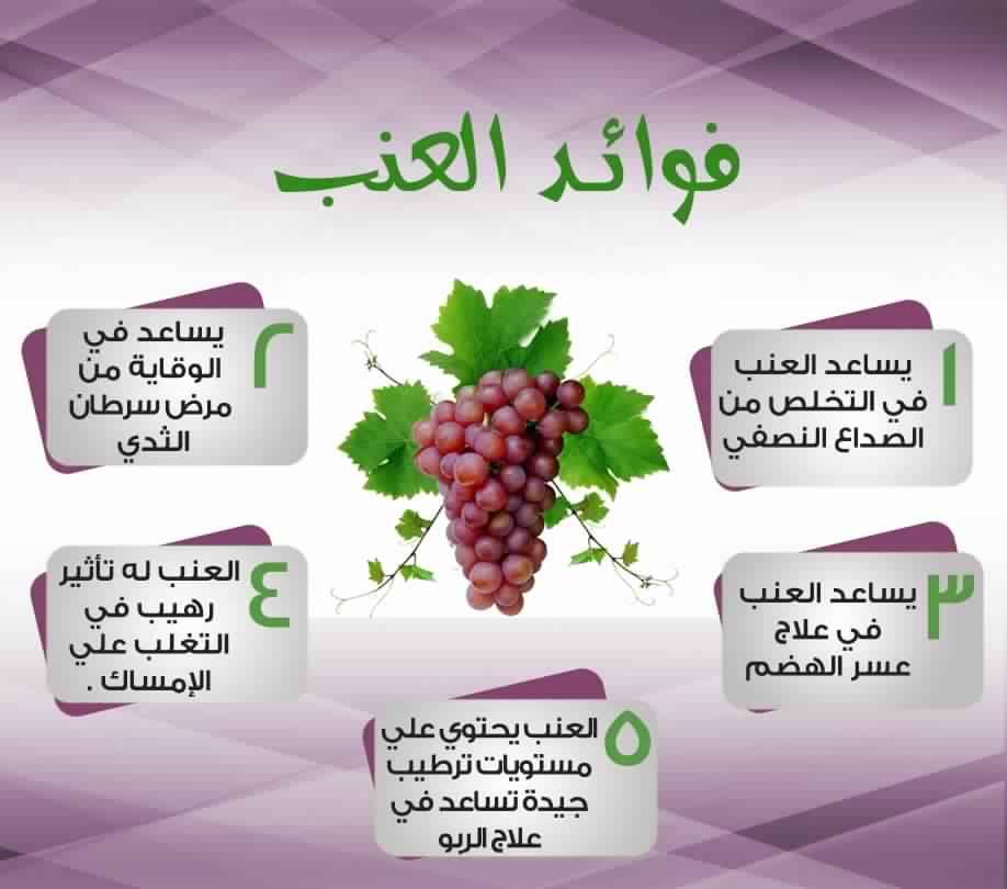 صوره فوائد العنب , معلومات تهم صحتك