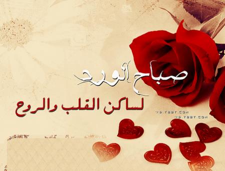 بالصور شعر صباح الخير حبيبتي , صباح بنكهه الحب المؤثره 1933 1