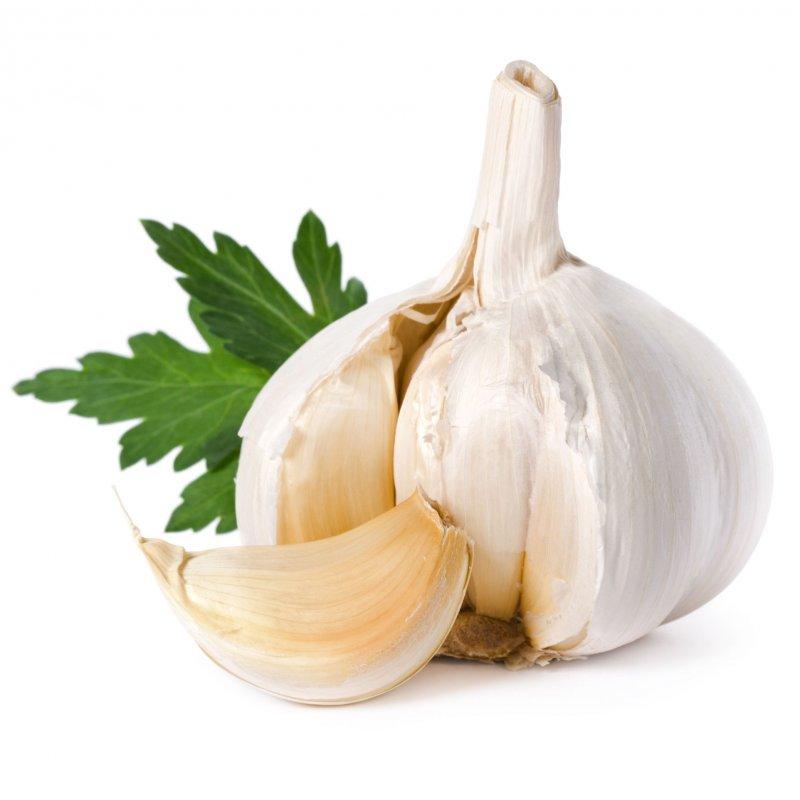 صورة فوائد اكل الثوم , معلومات مهمه للصحه